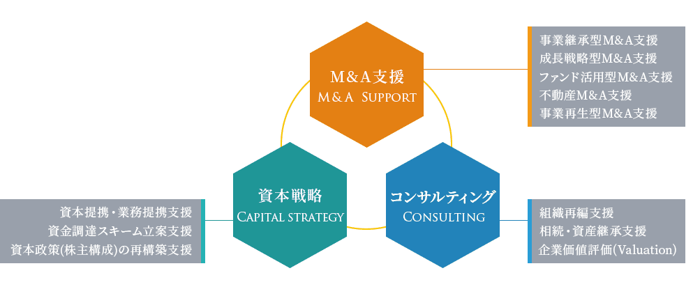 M&A支援,資本戦略,コンサルティングの概要